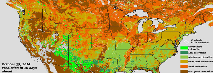 Fall Foliage from VIIRS Articles News CICSMD